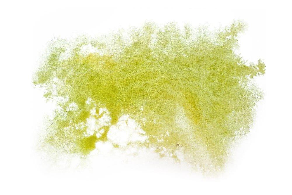 green paint splot